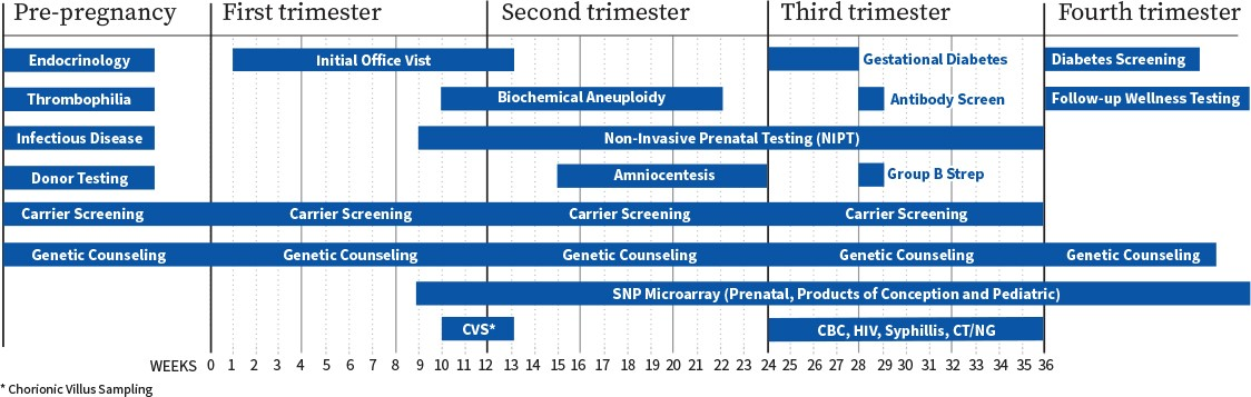 Reproductive_journey_chart